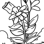 Coloring page flower | plants