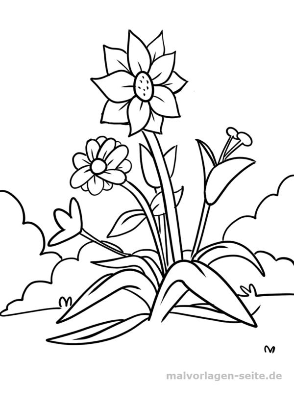 Malvorlage Blumen Gratis Malvorlagen Zum Download