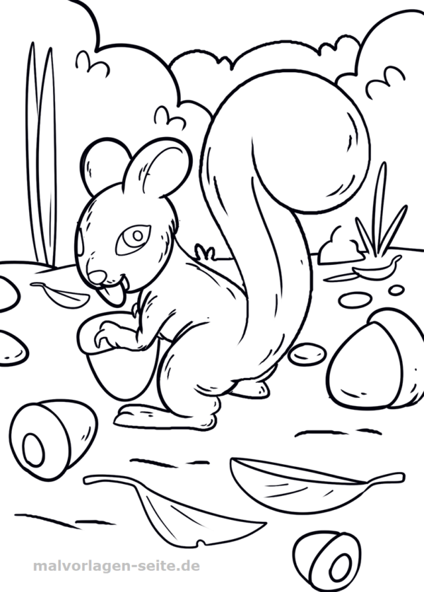 Malvorlage / Ausmalbild Eichhörnchen
