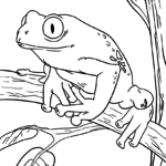 Coloriage grenouille | Animaux