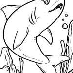 Coloring page shark | Animals in the water sharks