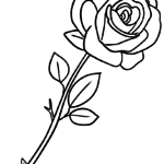 Coloring page Rose | plants