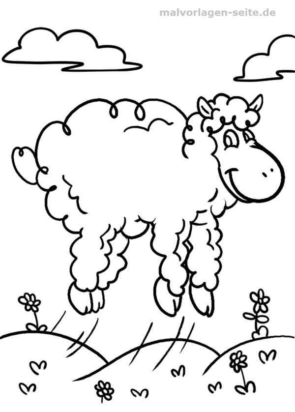 Malvorlage / Ausmalbild Schaf