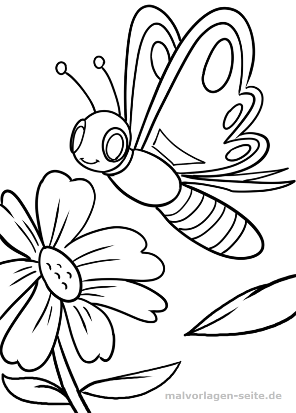 Malvorlage / Ausmalbild Schmetterling