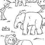 Dažymas gyvūnų