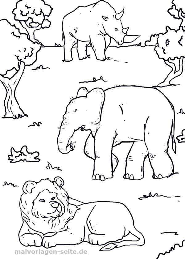 Malvorlage Tiere Afrika