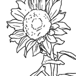 Coloring page Sunflower | plants