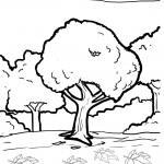 Coloring pages plants