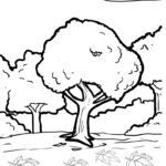 Coloring page maple tree | plants