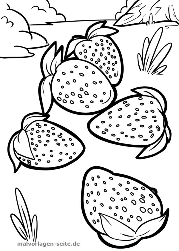 Värvimisleht / värviline lehe maasikad