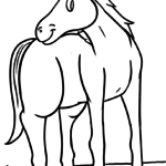 Coloring pages horses and riding