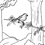 Coloring page bird in the tree