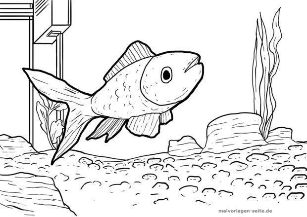 Página para colorear acuario | Páginas para colorear gratis para ...
