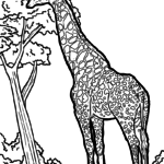 Coloring page giraffe | animals