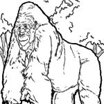 Coloring page gorilla | monkeys