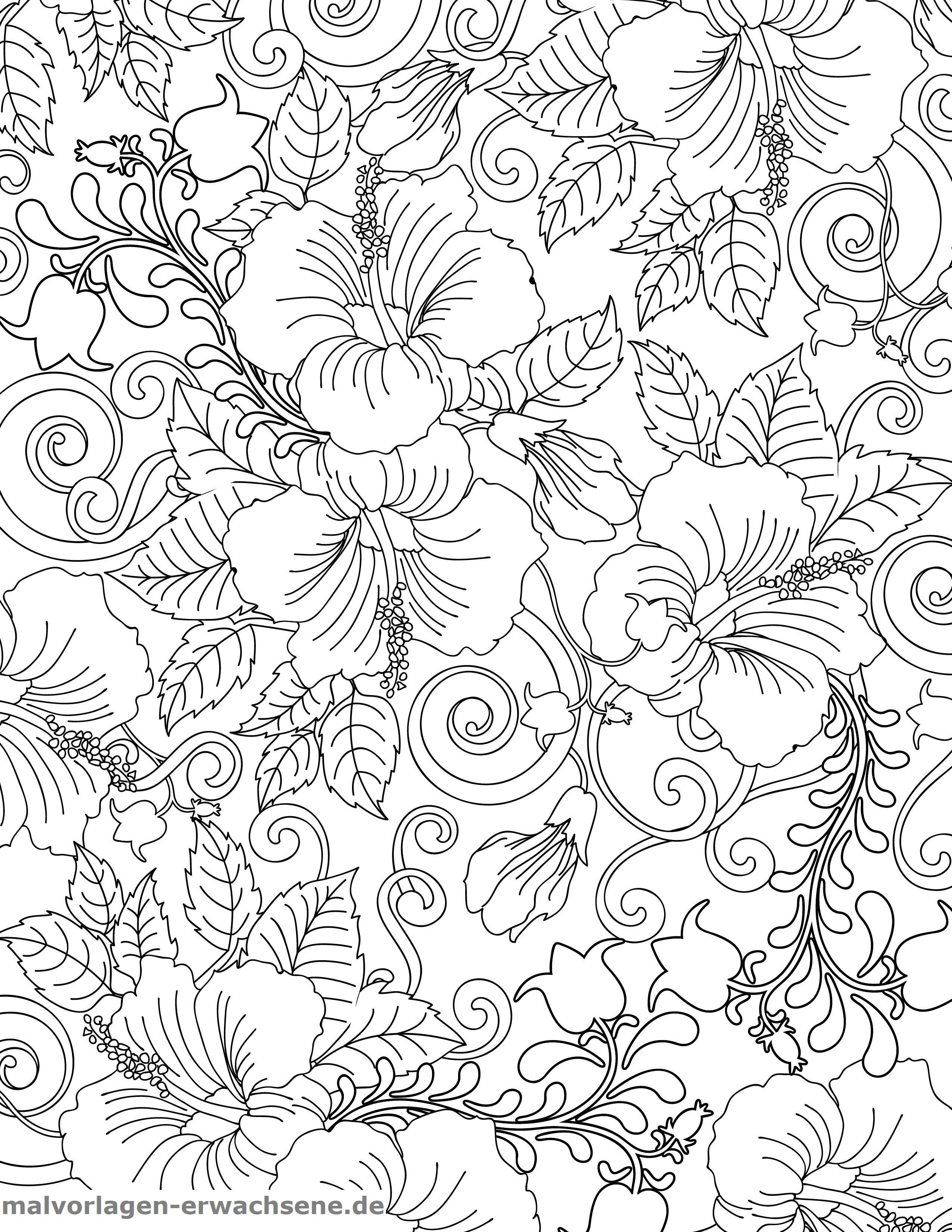 Malvorlage Hibiscus  Pflanzen - Kostenlose Ausmalbilder