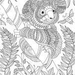 Coloring page koala for adults