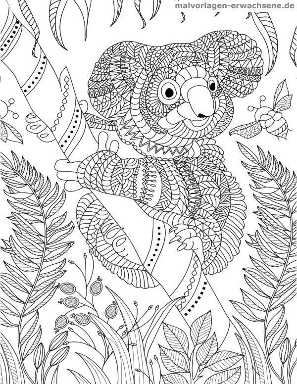 Dibujo para colorear Koala para adultos | Páginas para colorear ...