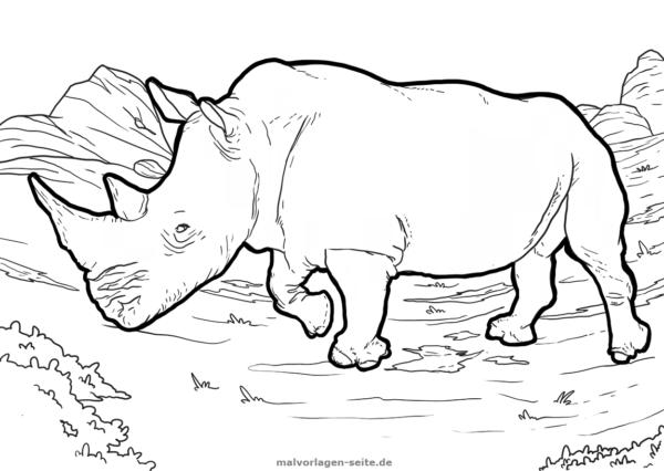 Malvorlage Nashorn