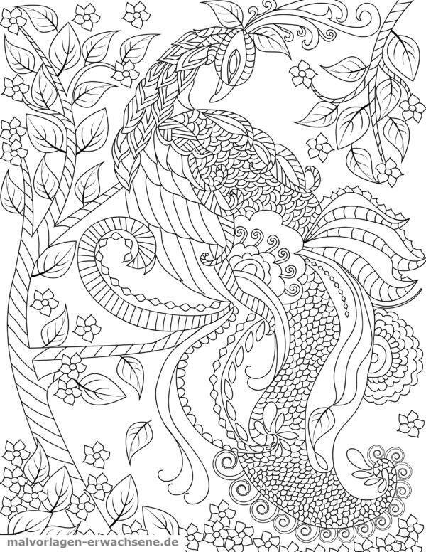 Dibujo para colorear Peacock | Páginas para colorear gratis para ...