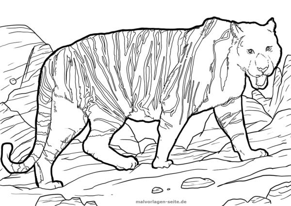 Malvorlage / Ausmalbild Tiger