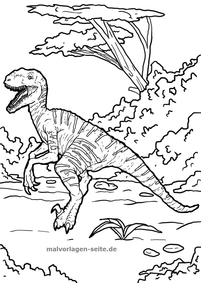 Malvorlage Velociraptor  Dinosaurier - Kostenlose Ausmalbilder