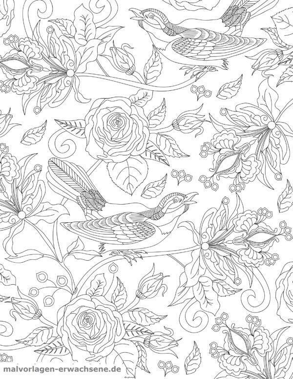 Värityskuva aikuisille - linnut ja ruusut