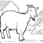 Coloring page goat