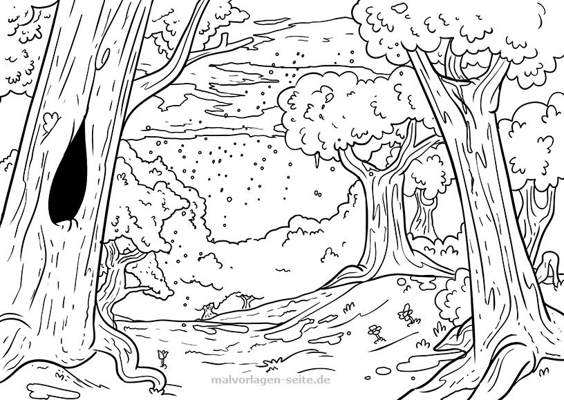 malvorlage stammbaum