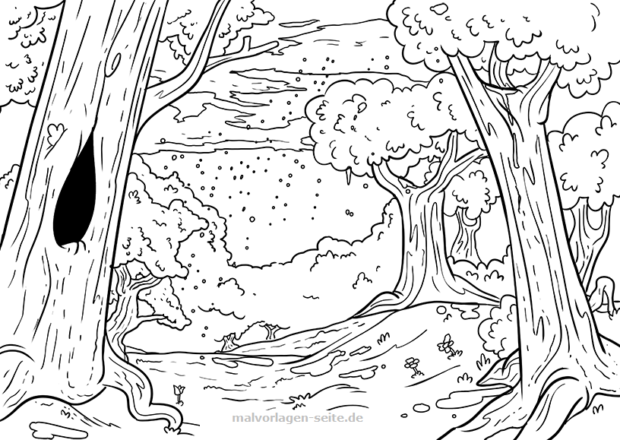 Coloring page forest and rain