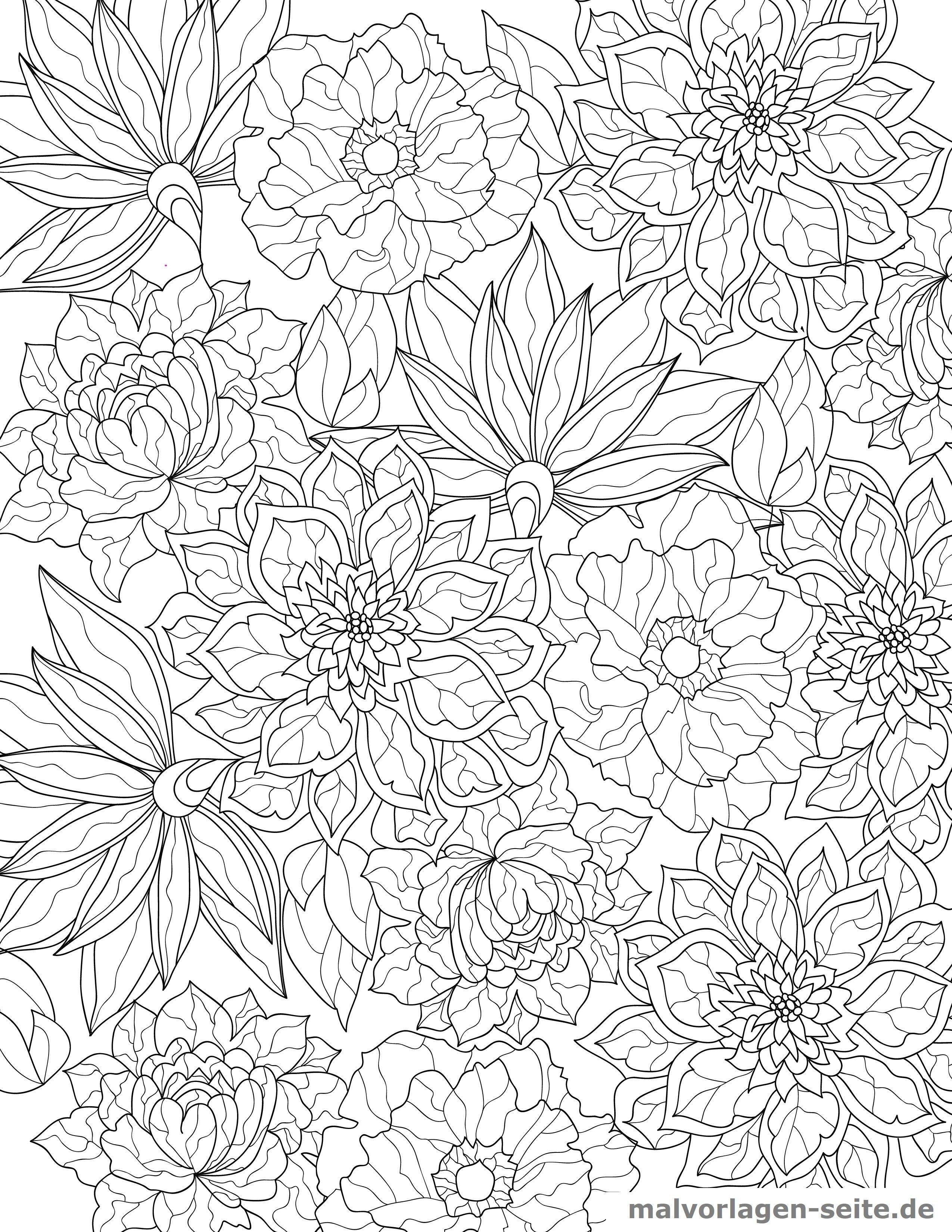 malvorlage blüten für erwachsene  kostenlose ausmalbilder