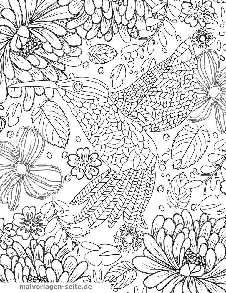 Malvorlage Kolibri für Erwachsene - Kostenlose Ausmalbilder