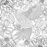 Coloring page hummingbird for adults