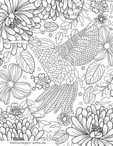 Coloring page for adults - Hummingbird
