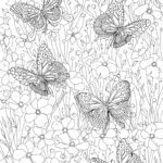 Coloring page adults - butterflies