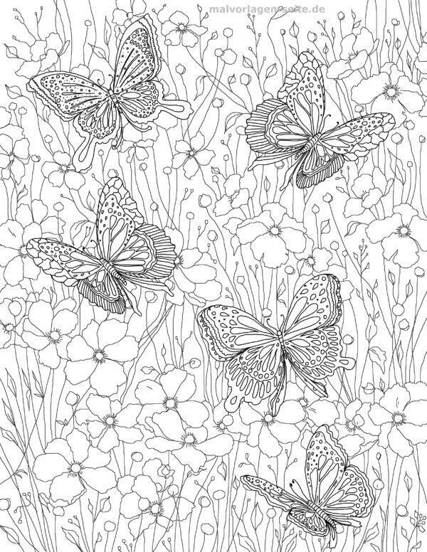 Leptiri s bojom na stranici s bojom