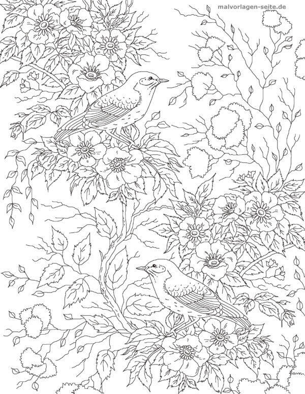 Coloring page Birds with flowers