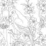 Coloring page bird feeds gutt for voksne