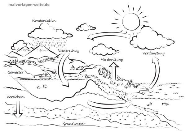 Water cycle for children explained