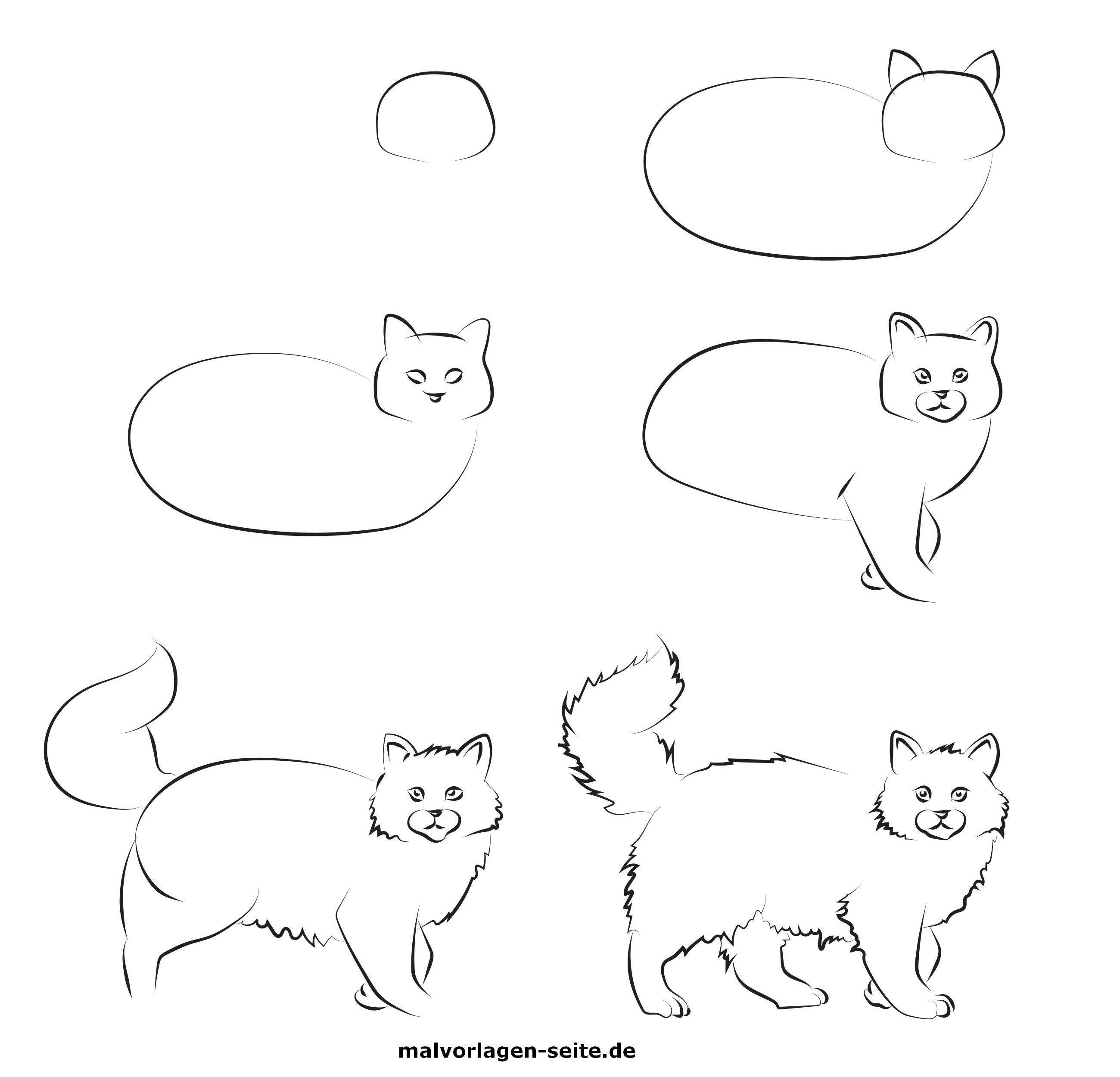 Wie Malt Man Eine Katze Gratis Malvorlagen Zum Download