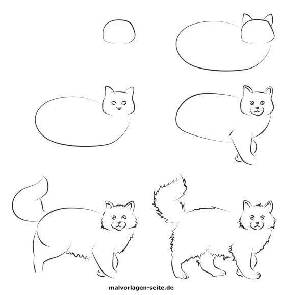 Wie malt man eine Katze?