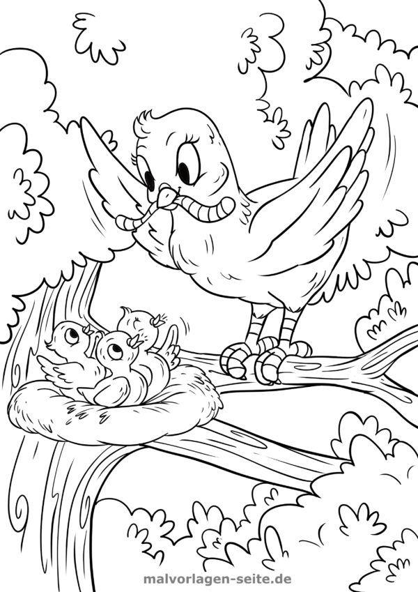 Coloring page bird feeds its cubs