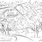Malvorlage Erwachsene Kirschbäume