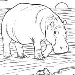 Coloring page hippo | dyr