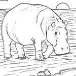 Värityskuva hippo | eläimet