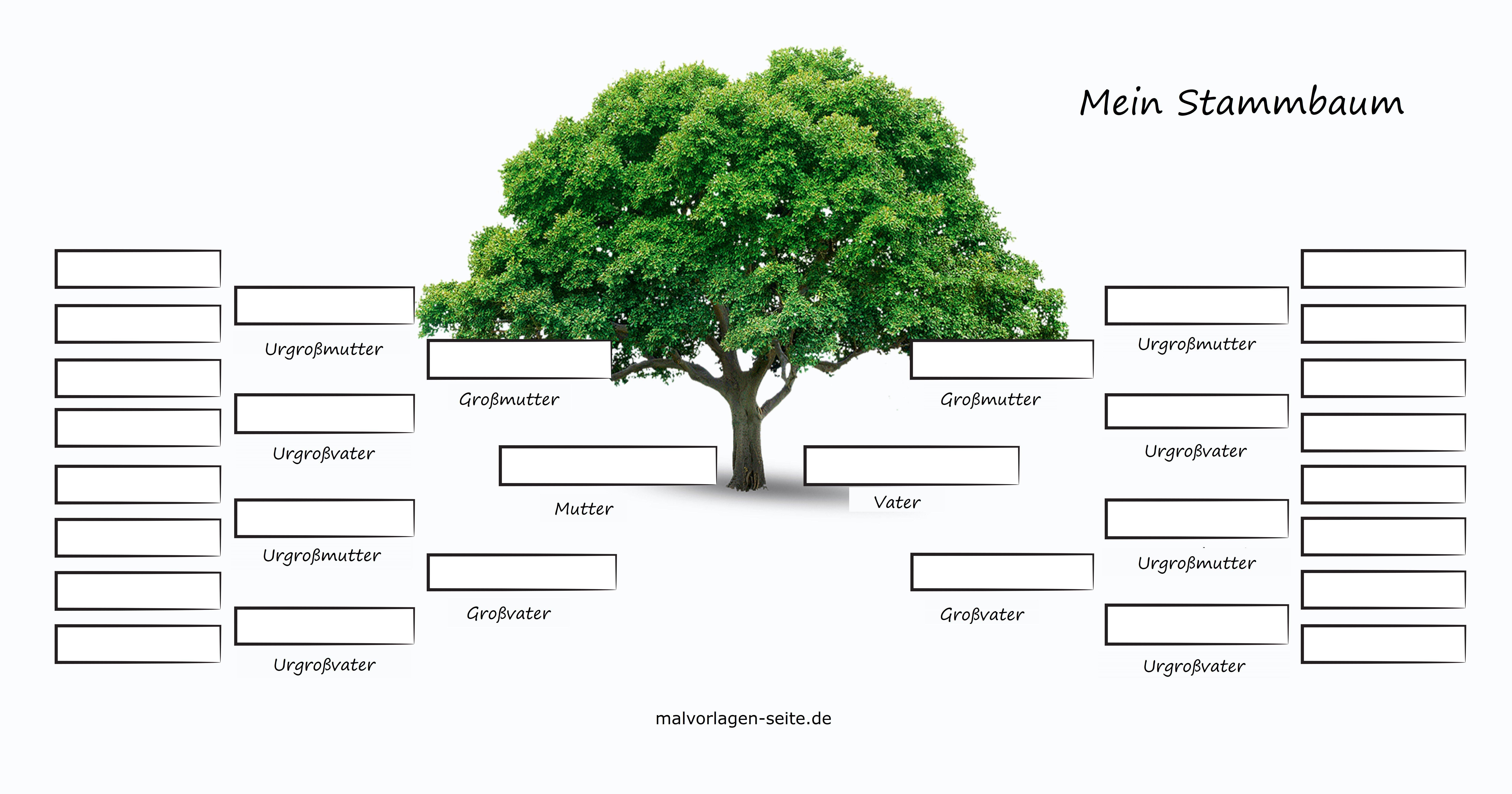 Mein Stammbaum