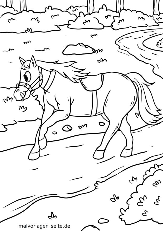 Väritys sivu hevonen