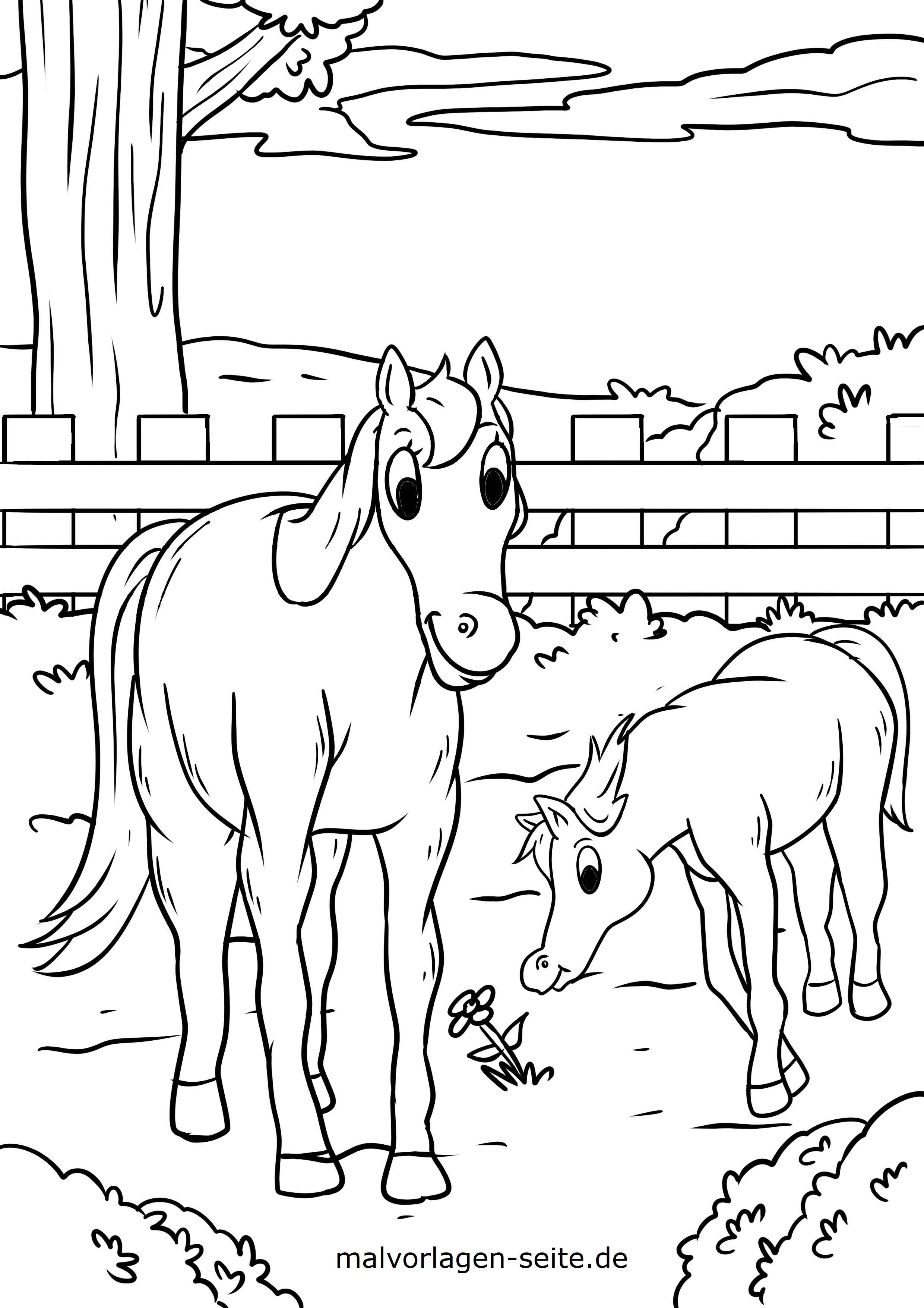 Malvorlage Pferd und Fohlen auf der Weide - Kostenlose Ausmalbilder