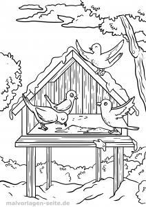 Coloring page bird feeder in winter