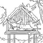 Coloring page birds feed bird feeder